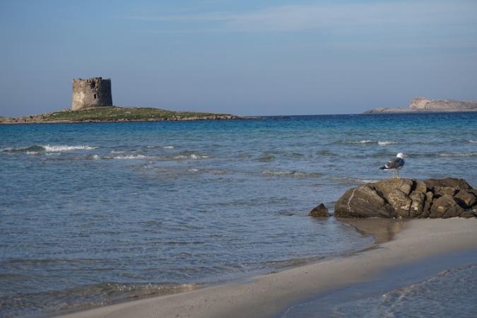 Scoprire San Teodoro Sardegna